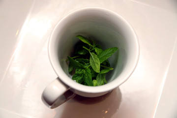 A cup with green mint leaves