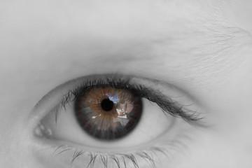 Farbe im Auge