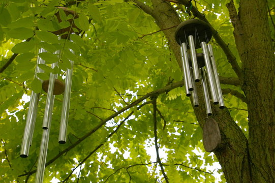 wind chimes in a tree
