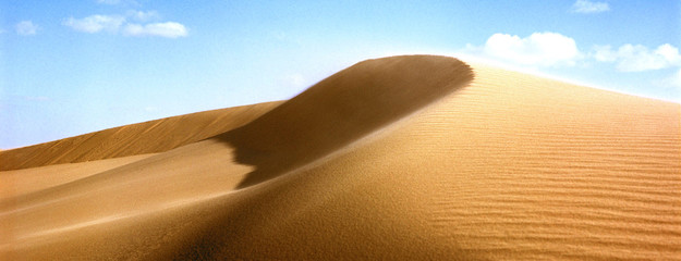 Foto op Aluminium Algerije Grand Erg