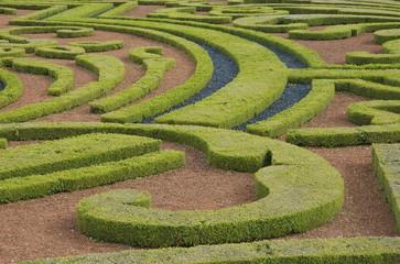 Parterre dans un jardin à la française