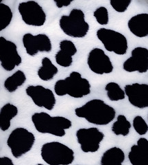 artificial black-and-white fur
