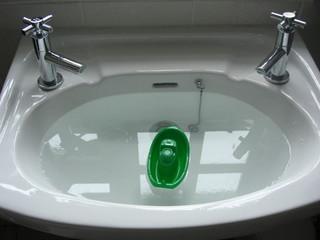 Boat in Sink
