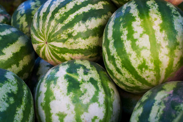 Watermelons in market place