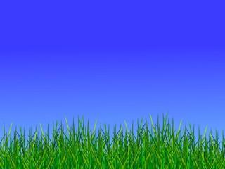 wiese und blauer himmel