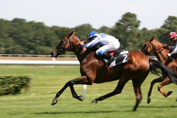 course de chevaux - horse racing