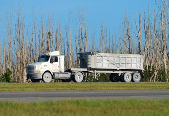 Heavy truck transporting bulk cargo