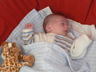 1050296 bébé endormi
