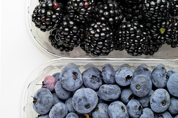 Wild berries:blueberries and blackberries