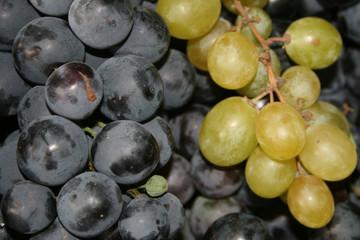 grape...together