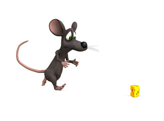 mouse chase