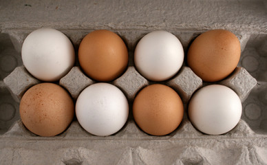 Eggs from the overhead view