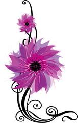 Flower_curl