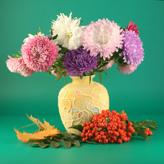 Asters in a vase and an ash-berry on a green background.