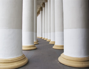 A line of columns of an exhibition hall