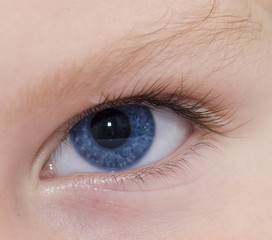 child blue eye