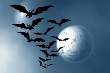 Halloween. Bats