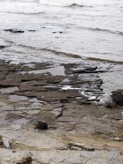 torekov coastline 34
