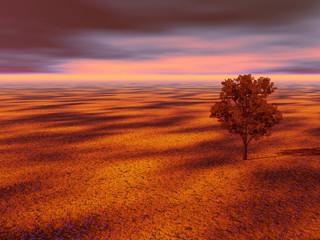 Photo sur Aluminium Rouge traffic paysage de campagne d'automne