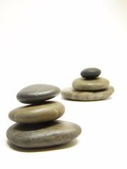 roche zen