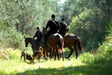 Fototapeten Jagd chasse à courre au chevreuil