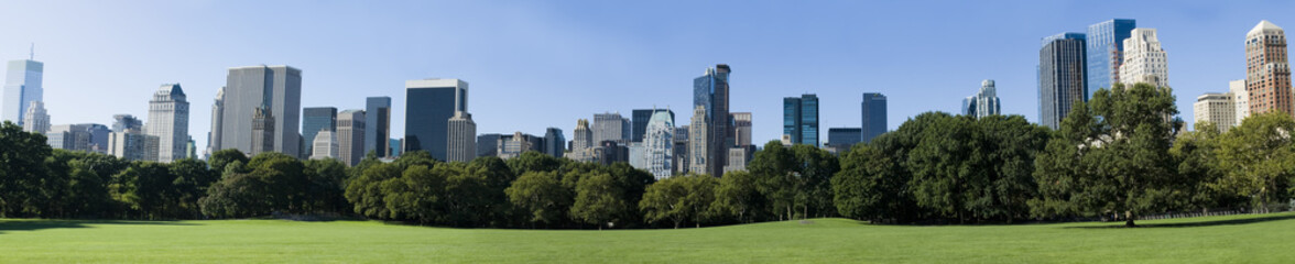 Manhattan from central parc