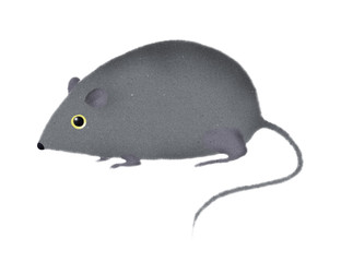 stylized mouse or rat illustraction