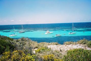 Poscard Perfect Rotnest Island Shoreline