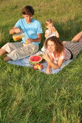 family picnic on the meadow