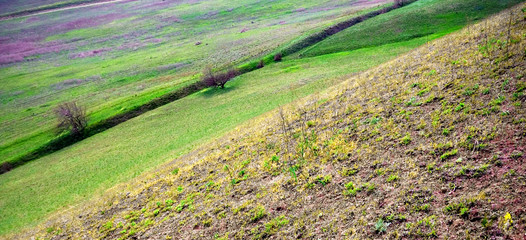 Landscape with spring diagonals