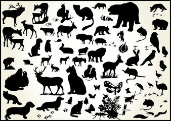 lots of animals vectors with scents