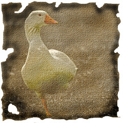 a goose on canvas