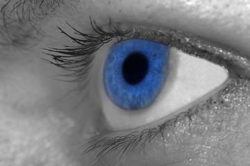 blue color eye