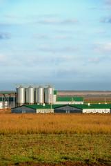 Modern animals - farm