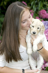 Pretty girl holding labradoodle puppy and giving it snugs