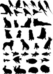36 Animal Pets Silhouettes