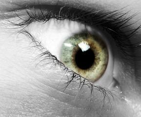 Auge Makro SW-SC