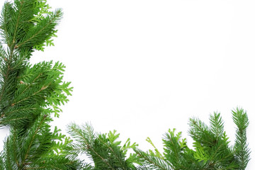 Christmas frame made of pine needles
