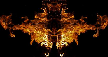 fiery bug
