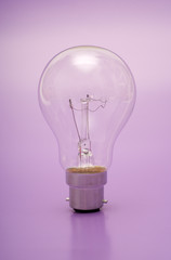 Light bulb on purple