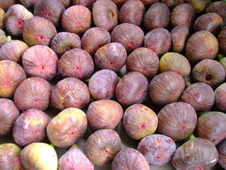 figues mures