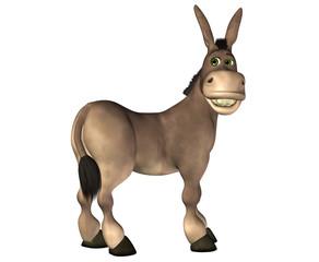 Donkey Cartoon . 2