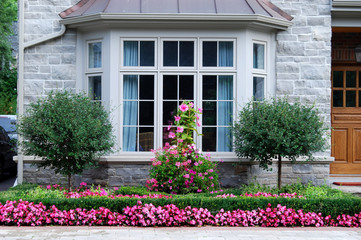 Bay window with row of pink flowers
