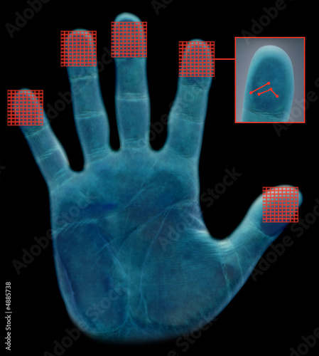 fingerprint recognition Automated fingerprint identification is the process of using a computer to match fingerprints against a database of known and unknown prints automated fingerprint identification systems (afis) are primarily used by law enforcement agencies for criminal identification purposes, the most important of which is the identification of a person.