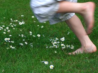 Running through daisies