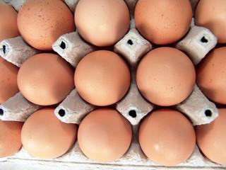 Eggs Brown Raw Food Pattern