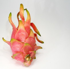 red dragonfruit
