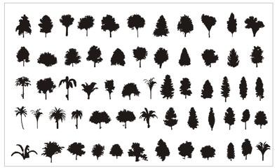 siluetas de arboles en vector