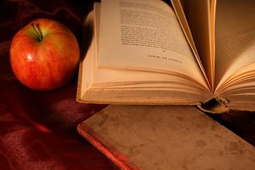 Lesevergnügen