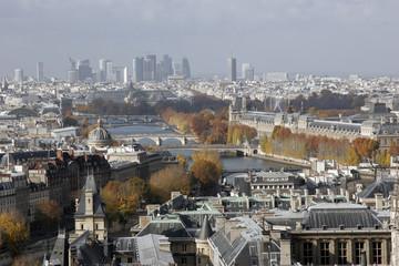 Paris vu des tours de la cathédrale Notre-Dame